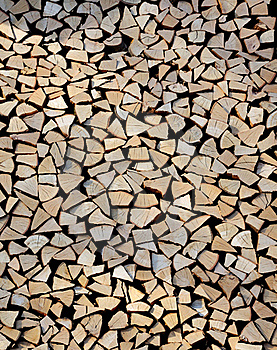 Sections Of Wood Stock Images - Image: 18477484