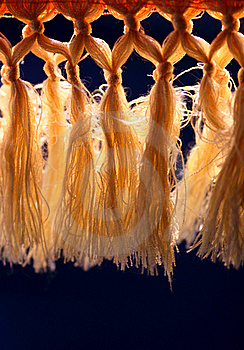 Curtain With Tassel Stock Image - Image: 18479011