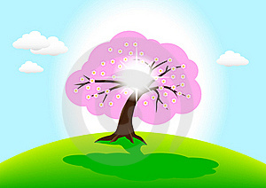 Flowering Tree Royalty Free Stock Photography - Image: 18481127