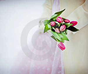 Flowers And Winter Stock Photo - Image: 18482270