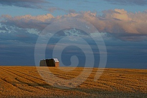 Harvest Royalty Free Stock Image - Image: 18485216