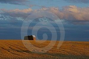 Harvest Royalty Free Stock Image - Image: 18485216