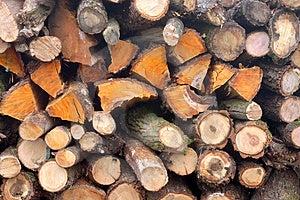 Wooden Background Stock Photo - Image: 1856740