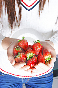 Hand Holds Many Strawberries Royalty Free Stock Photography - Image: 18518337