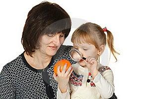 Studying The Orange Fruit Stock Image - Image: 18522621