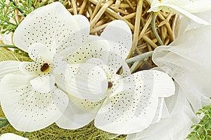 Flower Decoration Royalty Free Stock Images - Image: 18531109