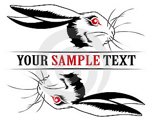 Bunny Rabbit Face Royalty Free Stock Image - Image: 18532706
