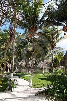Mauritius - Africa Stock Images - Image: 18548314