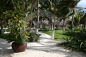 Vacation Resort In Reunion - Africa Royalty Free Stock Photography - Image: 18548327