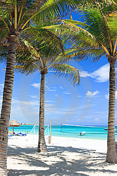 Tropical Beach Stock Photos - Image: 18549003