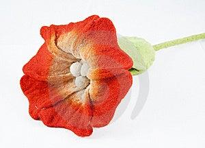 Fleece Flower Royalty Free Stock Photo - Image: 18563015