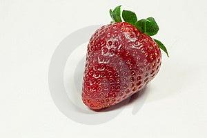 Strawberry Stock Photography - Image: 18609482