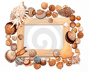 Holiday Beach Concept With Shells Stock Image - Image: 18629851