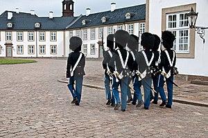 Protetores Dinamarqueses Do Pelotão Fotografia de Stock - Imagem: 18635442