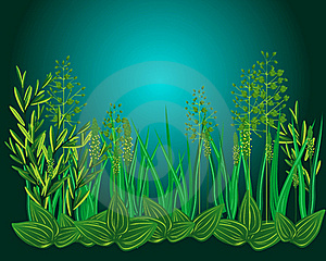 Night Grass Stock Photography - Image: 18635692