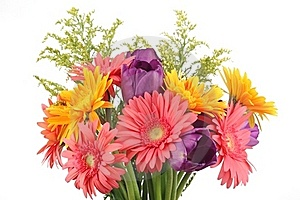 Spring Flowers Royalty Free Stock Photo - Image: 18664925