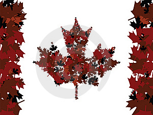 Maple Leafs Royalty Free Stock Photography - Image: 18666687