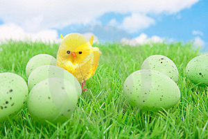 A Yellow Chick With Easter Eggs Stock Images - Image: 18676334