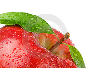 Ripe Red Apple Stock Photo - Image: 18680620
