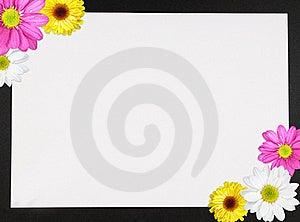 Daisy Border Royalty Free Stock Photo - Image: 18689435