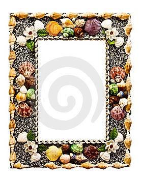 Frame Shell Royalty Free Stock Photos - Image: 18692918