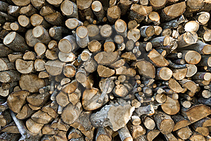 Stack Of Logs Royalty Free Stock Photo - Image: 18715765