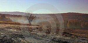 Morning Landscape Royalty Free Stock Images - Image: 18720619