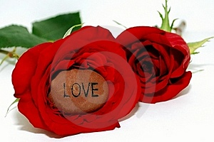 Love Stone Inside A Rose Stock Images - Image: 18728544
