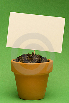 Blank Sign In Little Flower Pot Stock Photography - Image: 18728652