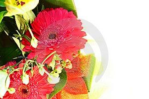 Flower Border Royalty Free Stock Photo - Image: 18734975
