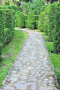 Walk To Garden Royalty Free Stock Photos - Image: 18740628