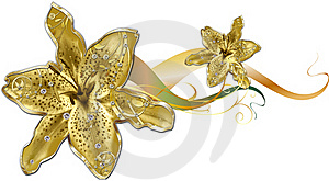 Gold Lily Royalty Free Stock Photos - Image: 18748088