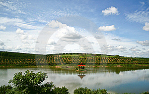 Reservoir In Orange Farm Stock Photo - Image: 18749650