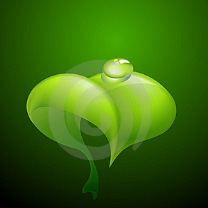 Green Leaf With Dew Stock Image - Image: 18754281