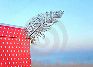 Feather Royalty Free Stock Photos - Image: 18758098