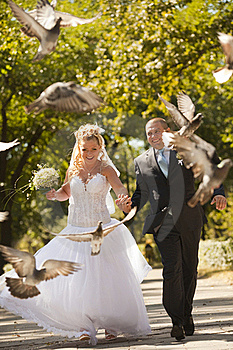 Newly-married Couple Stock Photography - Image: 18778182