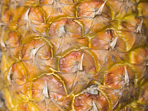 Ananas01 Imagen de archivo libre de regalías - Imagen: 1881876