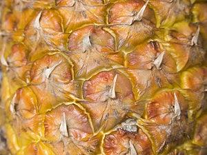Ananas01 Lizenzfreies Stockbild - Bild: 1881876