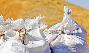 Sacks With Wheat Harvest Stock Photography - Image: 18814582