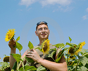 Man In The Field Of Sunflowers Royalty Free Stock Images - Image: 18824769