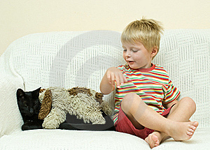 Family Cat And Young Child. Royalty Free Stock Photos - Image: 18829898