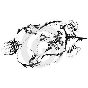Abstract Stylized B&W Pointer Stock Photos - Image: 18842093