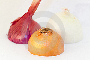 Onion Royalty Free Stock Photography - Image: 18842177