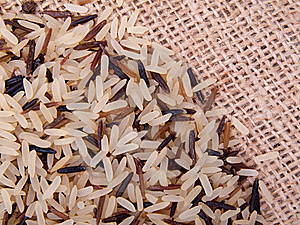 Wild Rice Stock Images - Image: 18855614