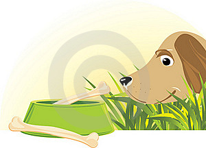 Delicious Doggy Meal Royalty Free Stock Images - Image: 18864309