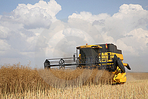 Yellow Combine Harvester On Blue Sky Royalty Free Stock Photos - Image: 18866158