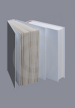 Two White Plain Books For Design Layout Stock Photo - Image: 18869600