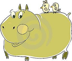 Hippopotamus Stock Image - Image: 18872621