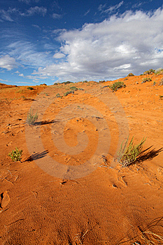 Coral Pink Sand Dune Royalty Free Stock Photography - Image: 18901977