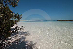 Cuba, Tropical Beach Stock Photo - Image: 18913770